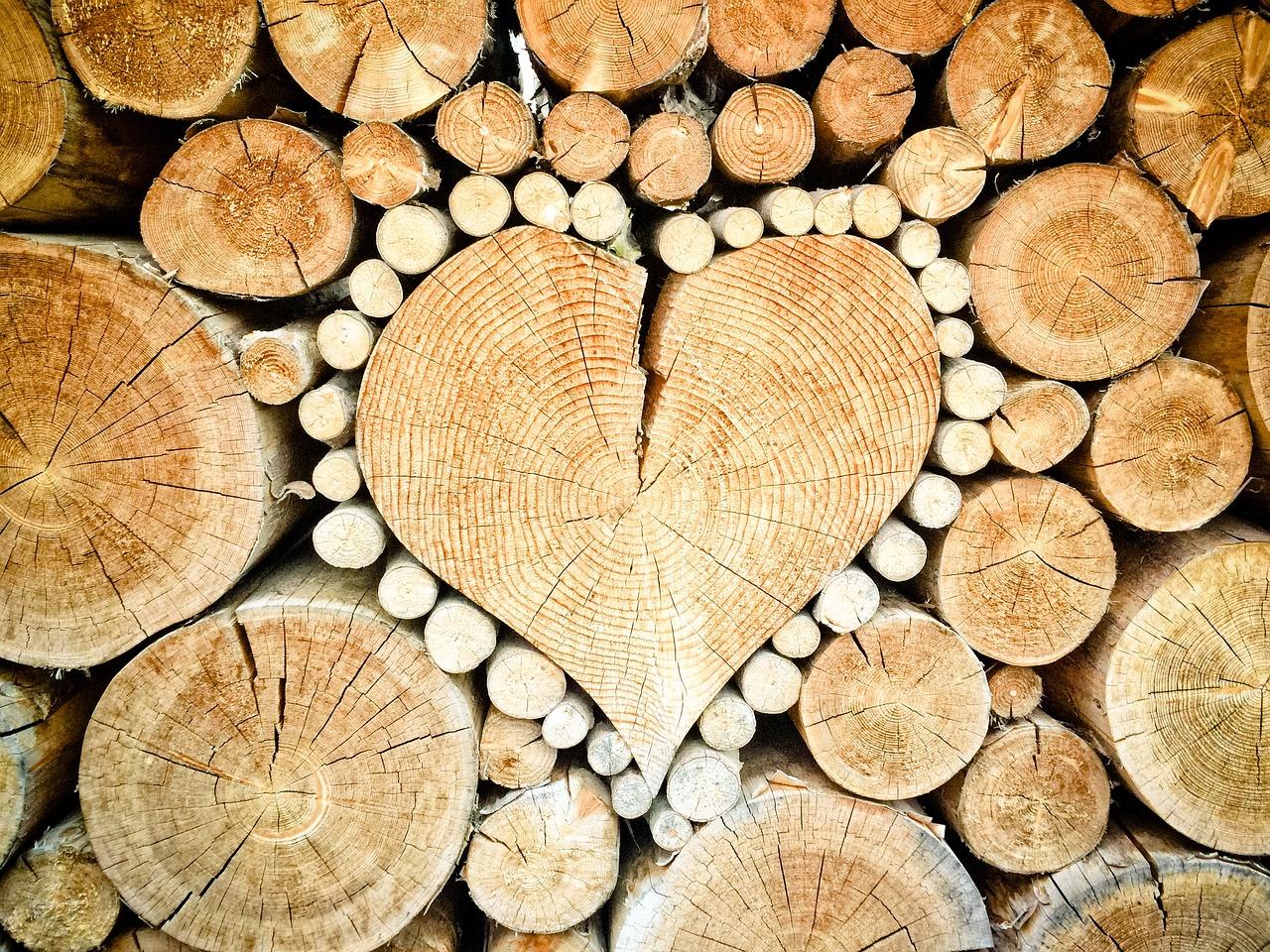 Poêles à bois : pour le combustible le moins cher du marché